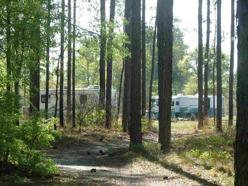 Campground photo